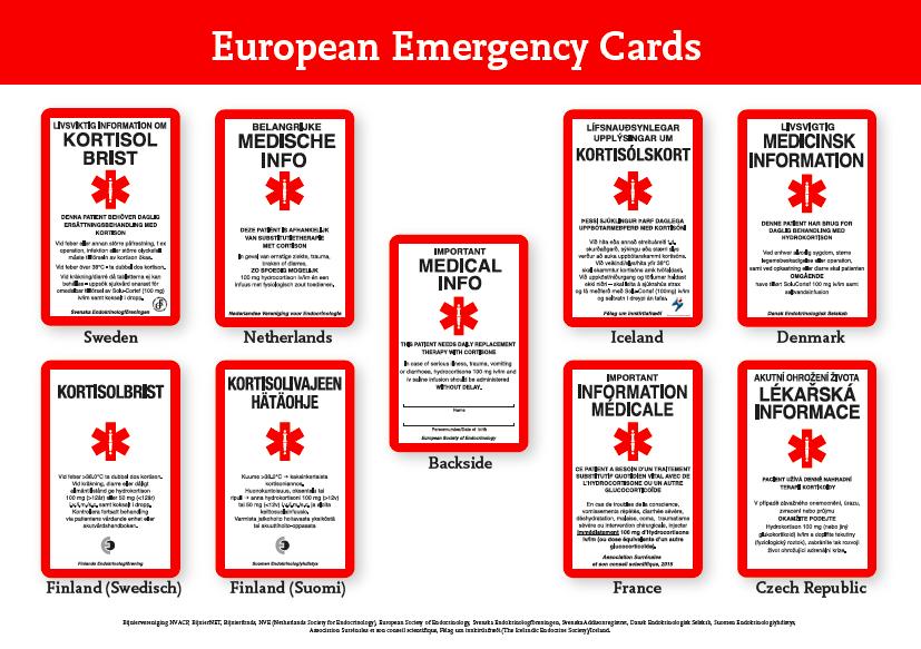 International Emergency Card